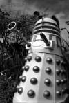 Richard Farrell's Dalek