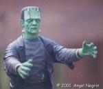 Angel Negrin's Frankenstein