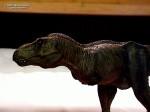 Michael Walker's T Rex