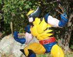 Greg Teft's Wolverine