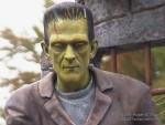 Roger Fluhr's Frankenstein